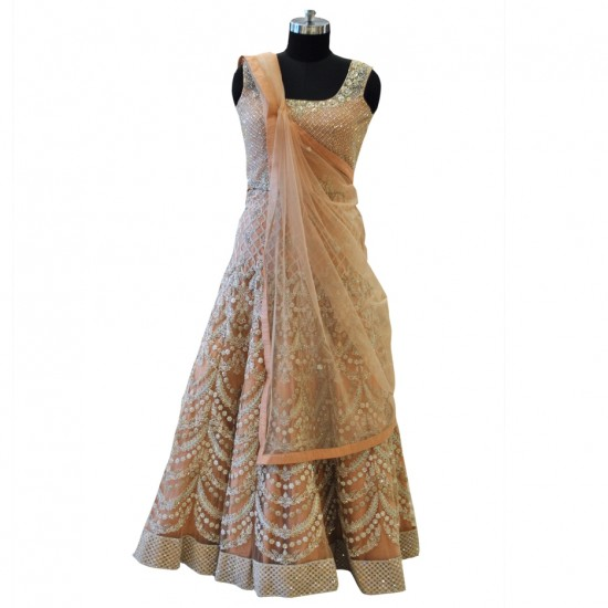 Net With Silver Embroidery Lehenga